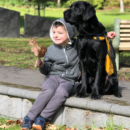 Autism Assistance Dog Funded by NDIS